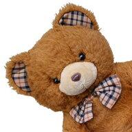 teddych